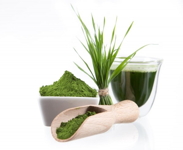 Image: Wheatgrass heals 74-year-old man with cancer, after doctors give him only weeks to live