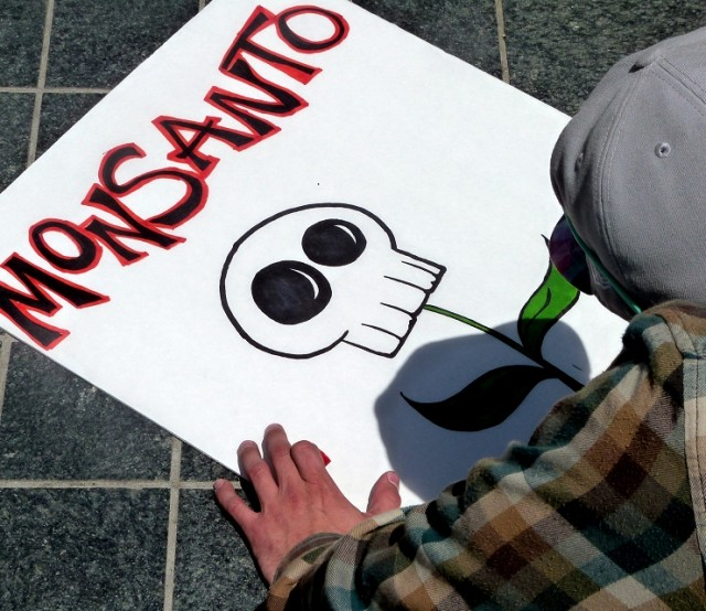 Image: Polluted China now imitating Monsanto by jumping into the GMO seed industry