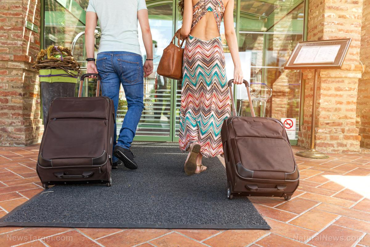 Image: Super bedbugs now emerging everywhere thanks to global travelers who carry the pests at the speed of jet travel