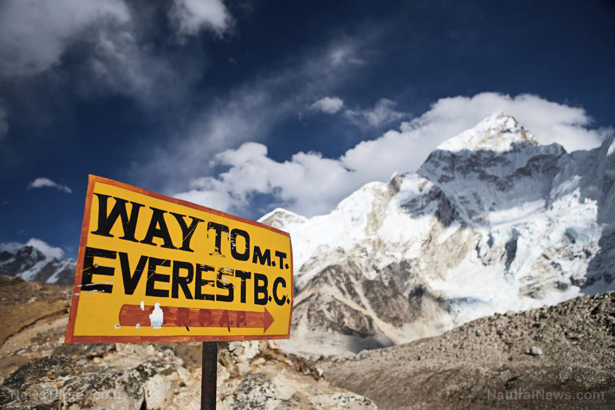 Image: Has Mount Everest become the world's tallest garbage dump?