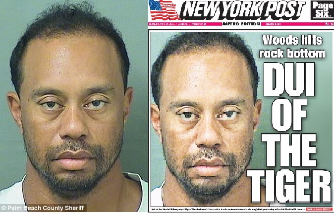 Image: Tiger Woods' alcohol breath test was ZERO! Prescription drugs really did make him drive like a lunatic
