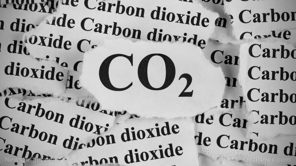 Image: Scientists develop clean fuel using CO2, proving again how essential carbon dioxide is to human life
