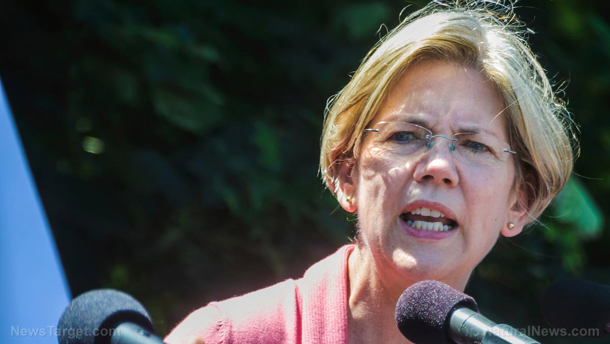 "Image: Elizabeth Warren pushing for government-run health care system to ""solve"" the problem of government-run health care systems"