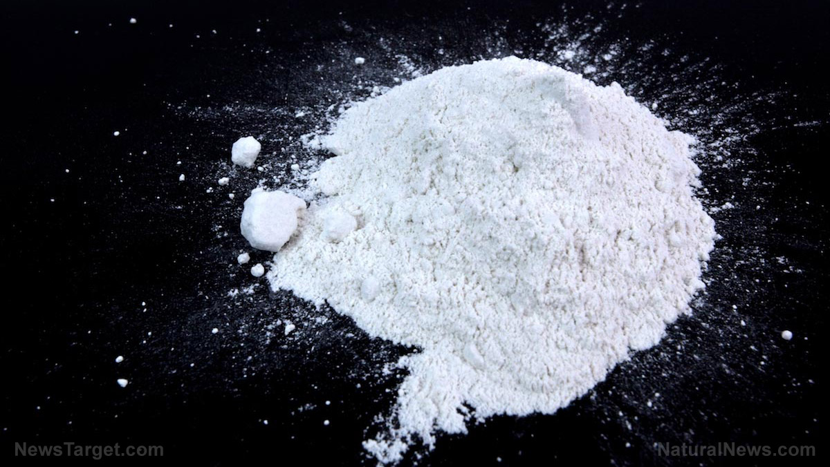 Image: Why and how to use diatomaceous earth for your body and home