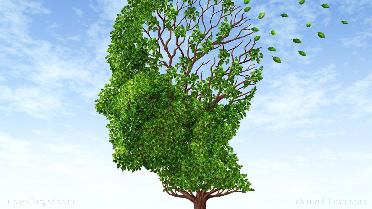 Image: B is for brain: Nicotinamide riboside is crucial in preventing Alzheimer's