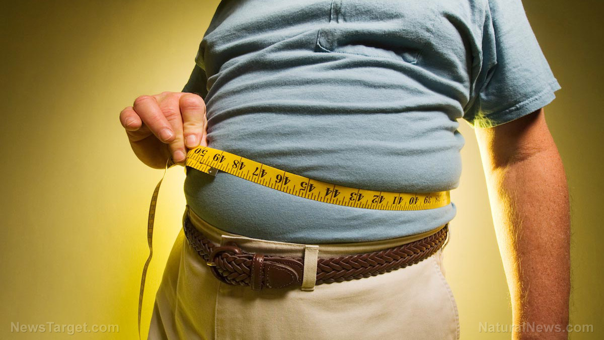 Image: Shocking study finds that 90 percent of American men are too fat