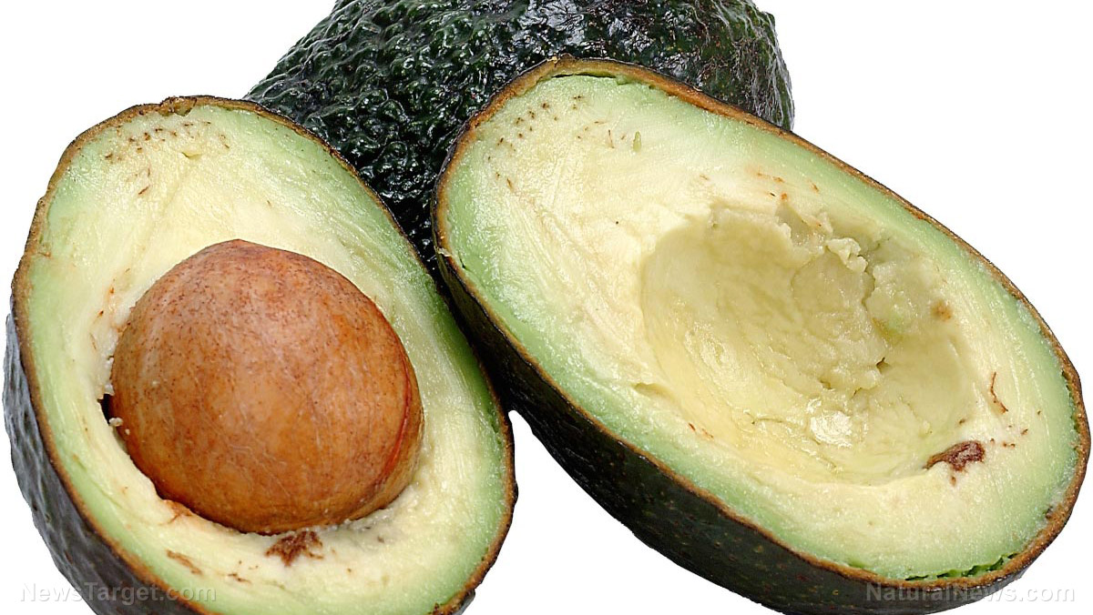 Image: Lutein in avocados found to protect the brain from effects of aging