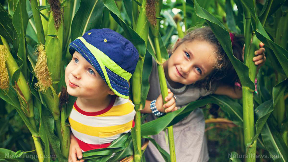 Image: Another reason to get your kid outside: Kids who play outdoors can SEE better, study finds
