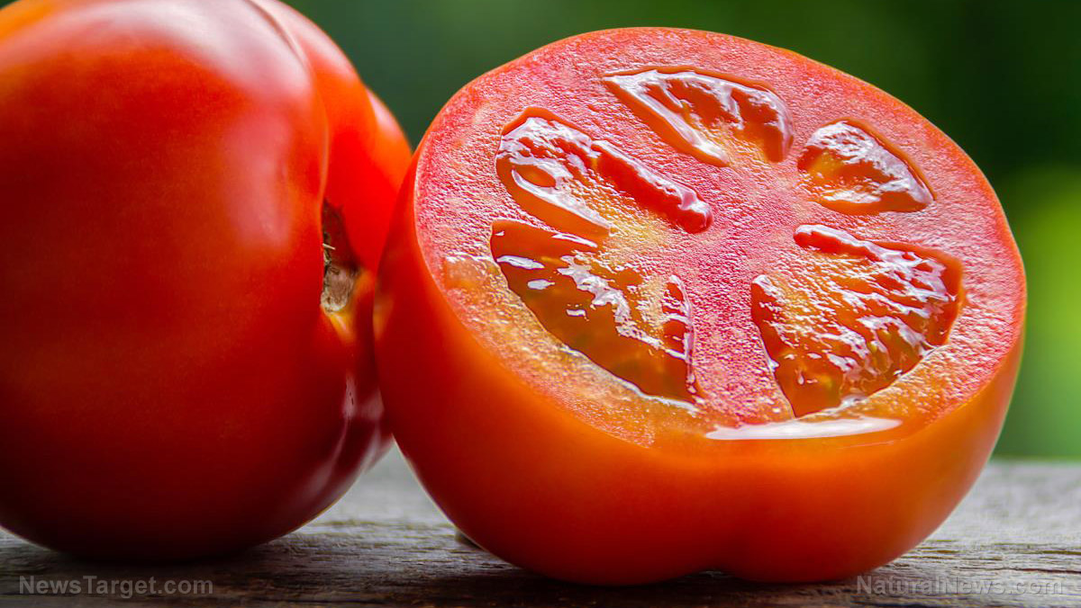 Image: Consuming a diet rich in tomatoes may help prevent skin cancer