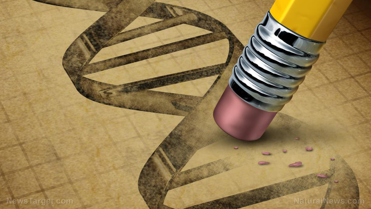 Image: GM humans: New vaccines made with synthetic genes will alter your DNA