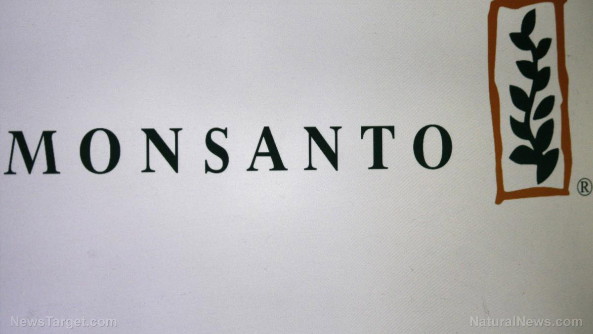 Image: Monsanto secret documents show massive attack on Seralini study