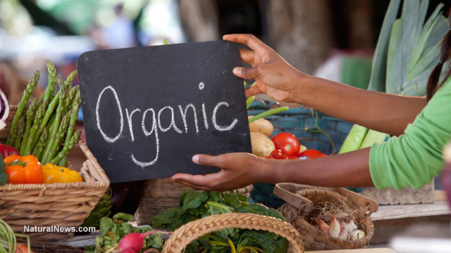 Image: Organic food isn't just better for you – it tastes better too