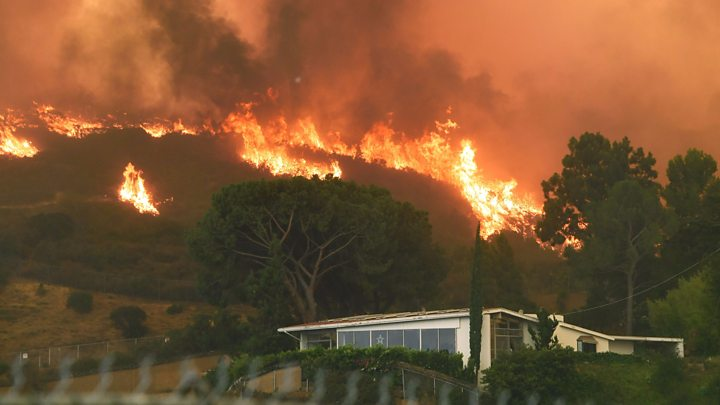 Image: Liberals go insane, blame Trump for wildfires in Los Angeles