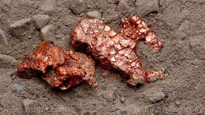 Image: Are you COPPER poisoned? This trace mineral, often used in water pipes, becomes TOXIC at very low exposures