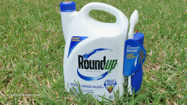 Image: Recent lawsuit says the chemical cocktail comprising Roundup is more toxic than just glyphosate on its own