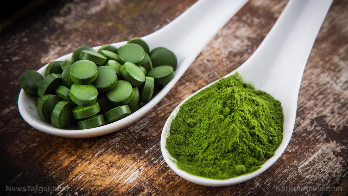 Image: Is chlorella the most potent superfood?