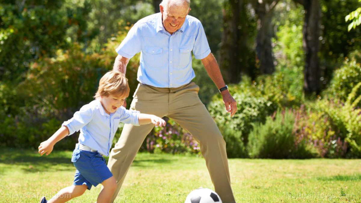 Image: Exercise to avoid frailty in old age: Research finds leg muscles lose nerve connections UNLESS kept healthy and strong