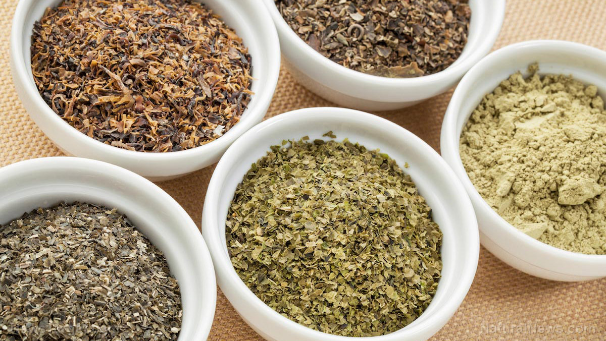 Image: Herbal support for Type 2 diabetes can provide natural glycemic control
