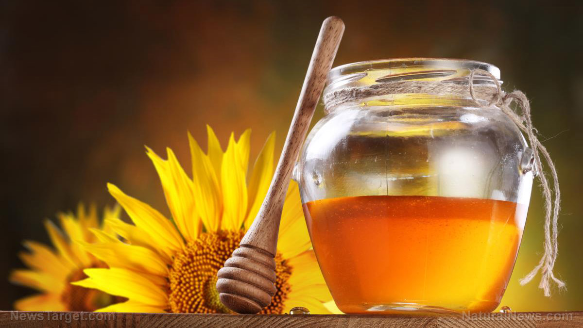 Image: Survival medicine: Are you familiar with the medicinal uses of honey?