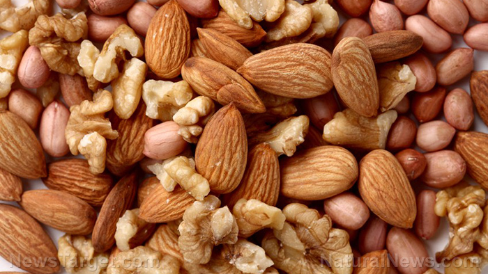 Image: Eating nuts increases survival in colon cancer patients