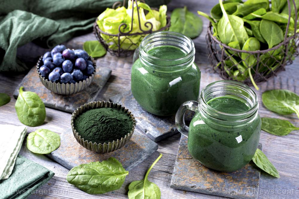 Image: Spirulina extract can prevent the increase of fat in the blood by inhibiting lipid metabolism and absorption