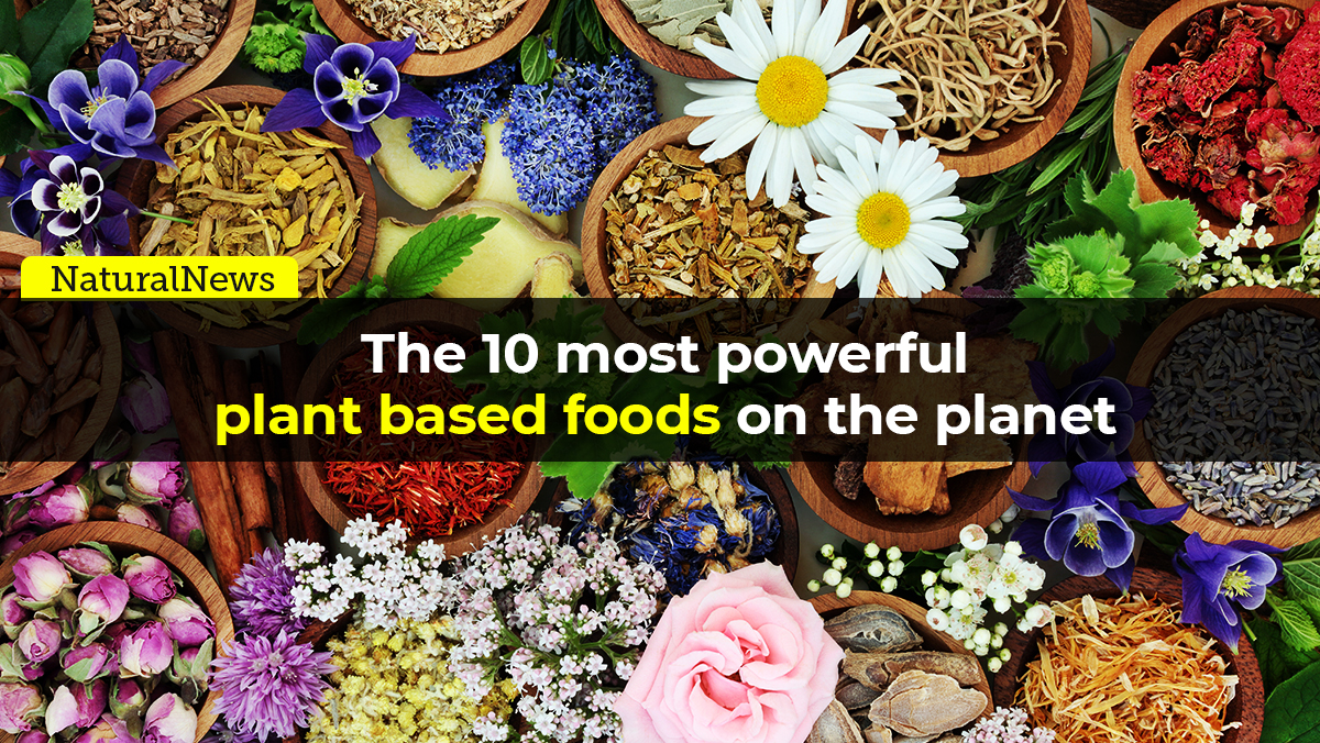 Image: From the Health Ranger Store: The 10 most powerful plant-based foods on the planet