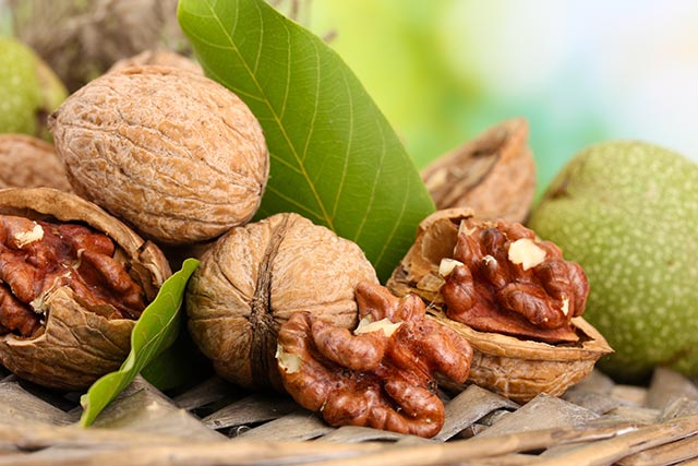 Image: New evidence shows that walnuts optimize the gut microbiome to suppress colon cancer cell growth