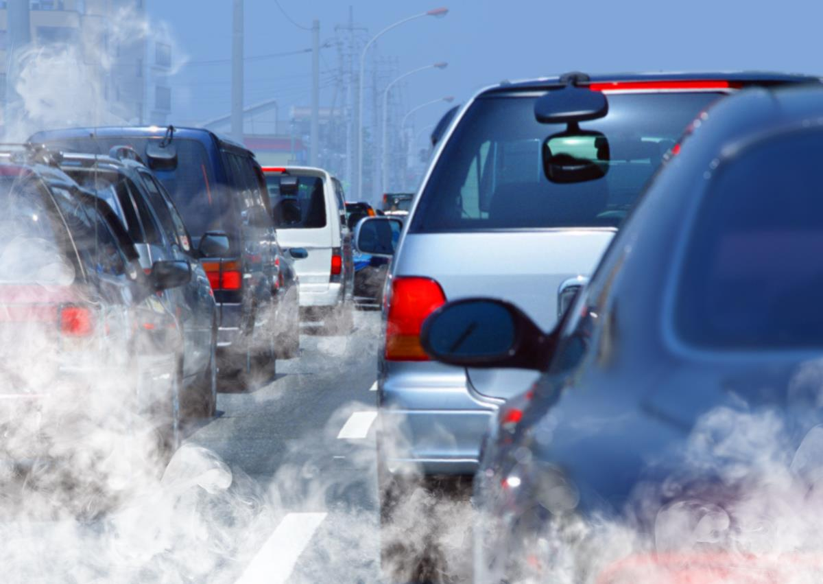 Image: Study: Air pollution allows bacteria to thrive in the respiratory track