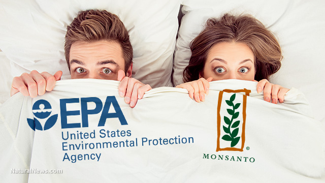 Image: Shocking study reveals EPA ignored scientific proof that Monsanto's glyphosate may cause CANCER