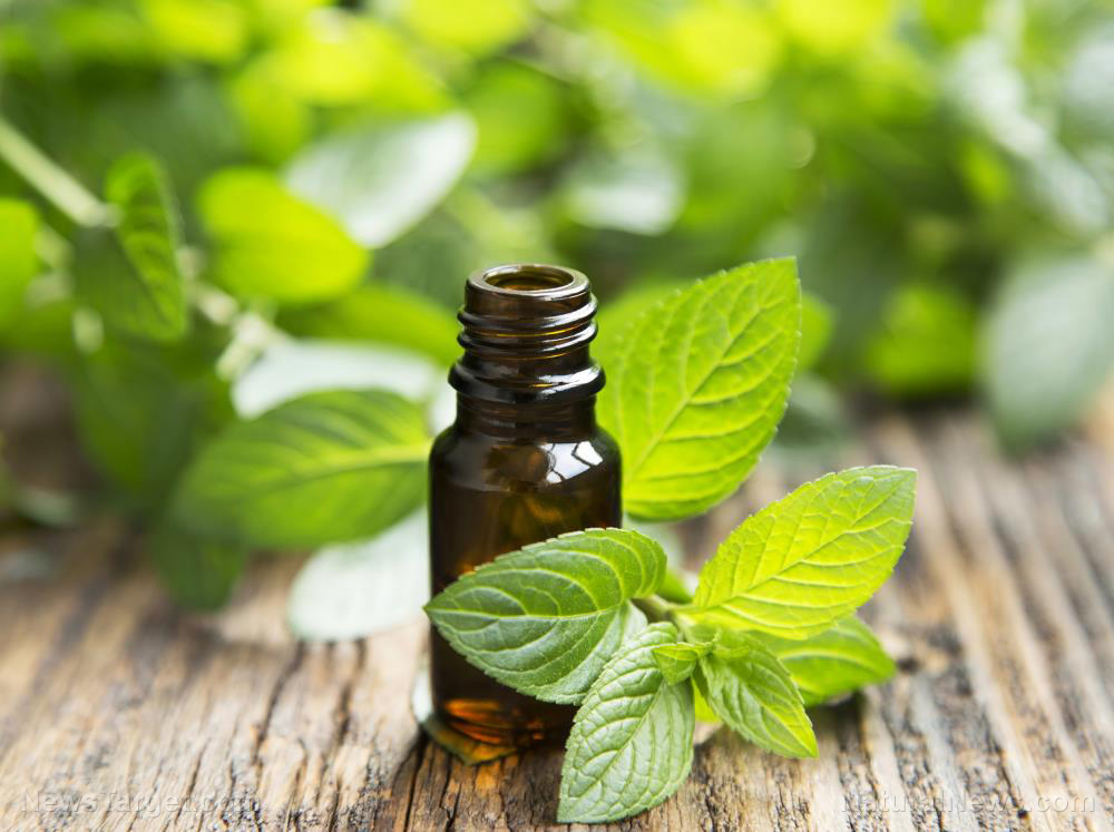 Image: Peppermint oil found to reduce symptoms of irritable bowel syndrome