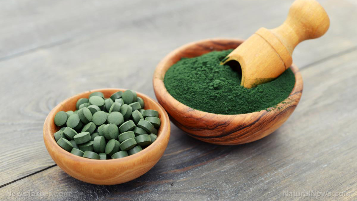 Image: The hepatoprotective, anti-hyperglycemic, and anti-diabetic properties of spirulina