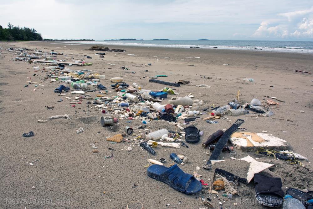 Image: Trash-to-fuel research could reduce mountains of plastic waste