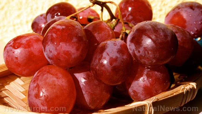 Image: Dietary grape powder effectively boosts cytokine production