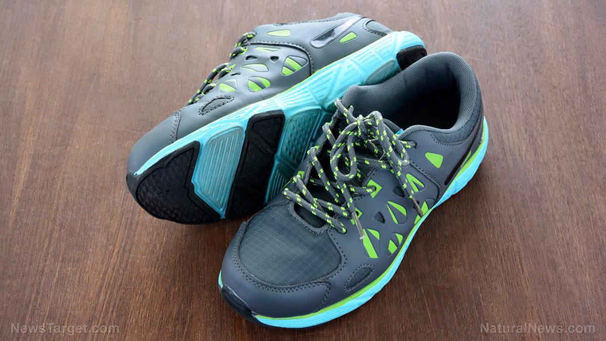 Image: Don't give in to the hype: Soft-cushioned running shoes increase leg stiffness, do not protect against impact