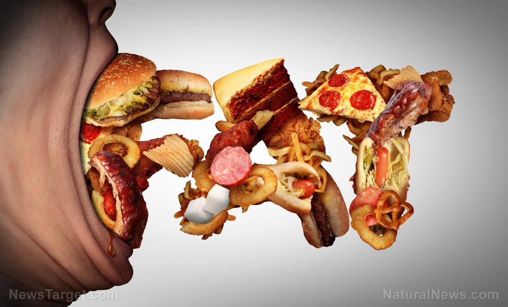 Image: Deadly diet: Study finds high-fat, high-sugar Western diet increases risk of sepsis, death