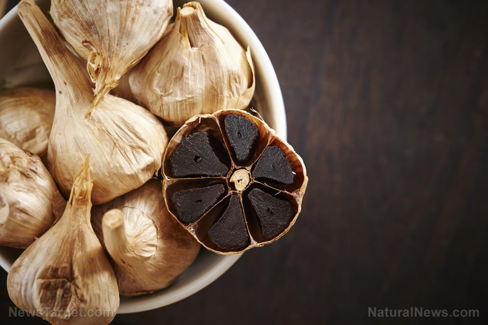 Image: Compound from aged garlic demonstrates anti-cancer activity