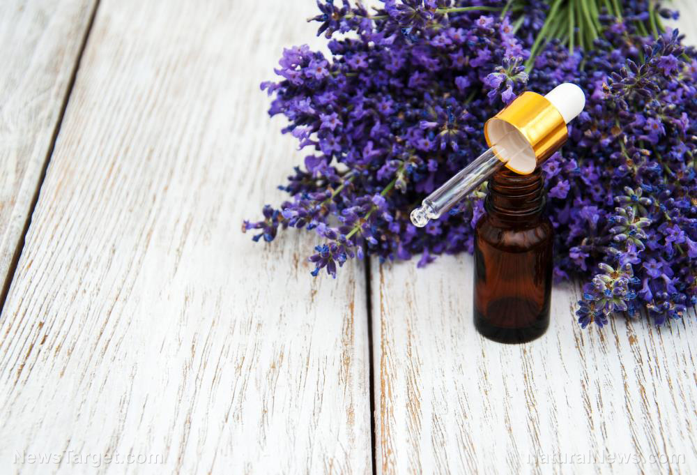 Image: Can essential oils be used to treat certain symptoms of dementia?