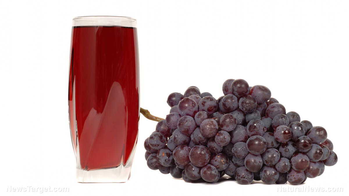 Image: Consumption of polyphenol-rich tropical grape juice found to increase antioxidants in plasma and erythrocytes in healthy humans without increasing glucose or uric acid levels