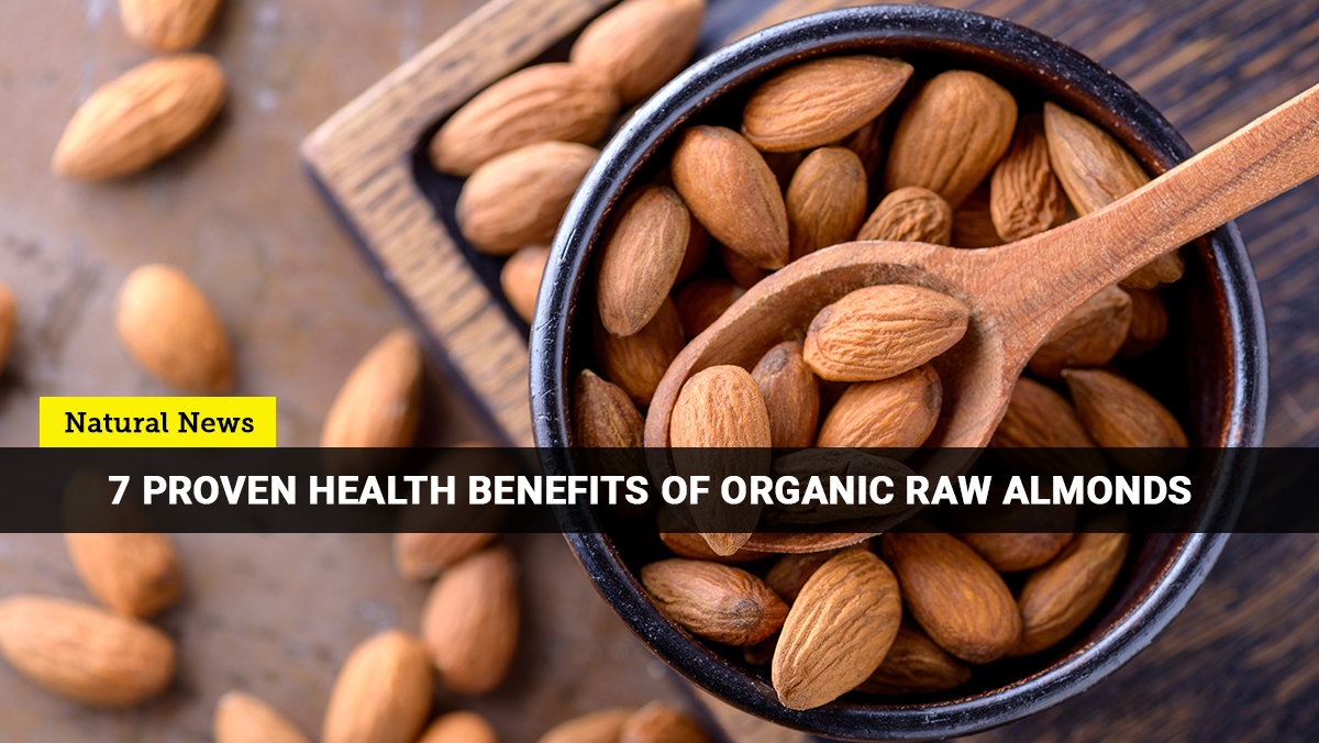 Image: Here are the best reasons why you should go nuts with organic almonds