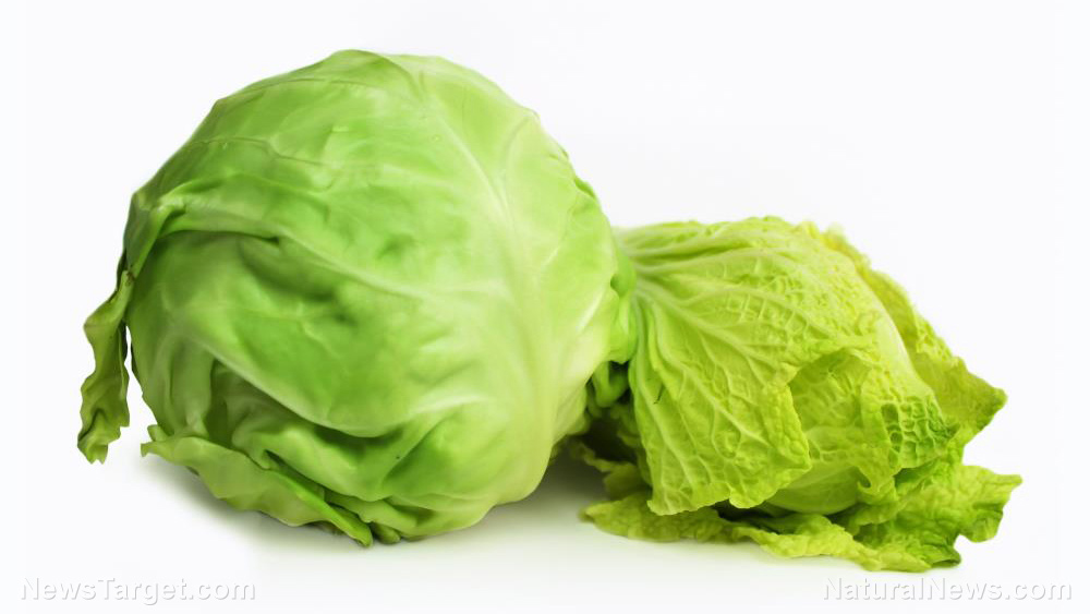 Image: Cabbage 101: What you need to know about different kinds and how to prepare them for maximum health benefits
