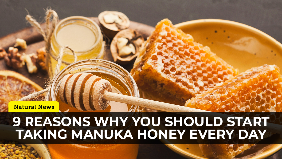 Image: 9 Reasons to take Manuka honey, a nutrient dense superfood with unique health-supporting molecules