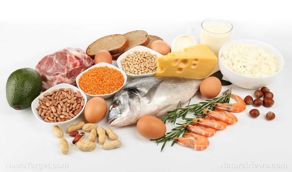 Image: Dietary energy intake and nutrition are important for the prevention of skeletal muscle loss in cancer survivors