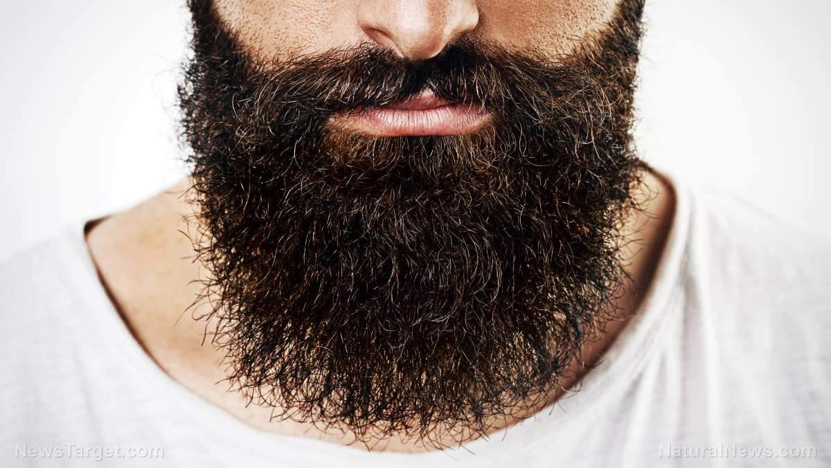 Image: Facial hair and hygiene: Are men's beards filthier than dog fur?
