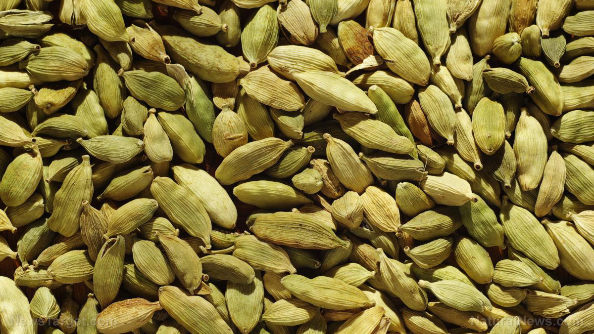 Image: Green cardamom supplements can protect the liver for those with obesity