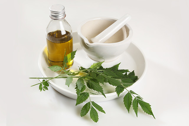 Image: More than a natural pest repellent: Use neem oil to boost your hair and dental health