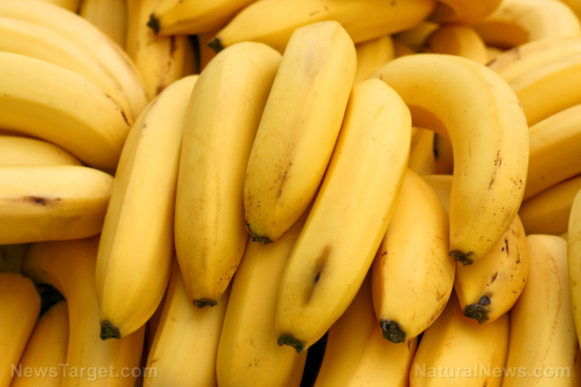 Image: 7 reasons to go bananas for bananas