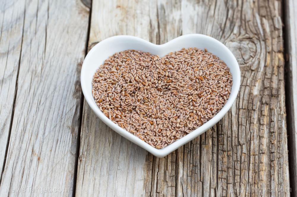 Image: Here's why fiber-rich psyllium husk is often used in keto and vegan recipes