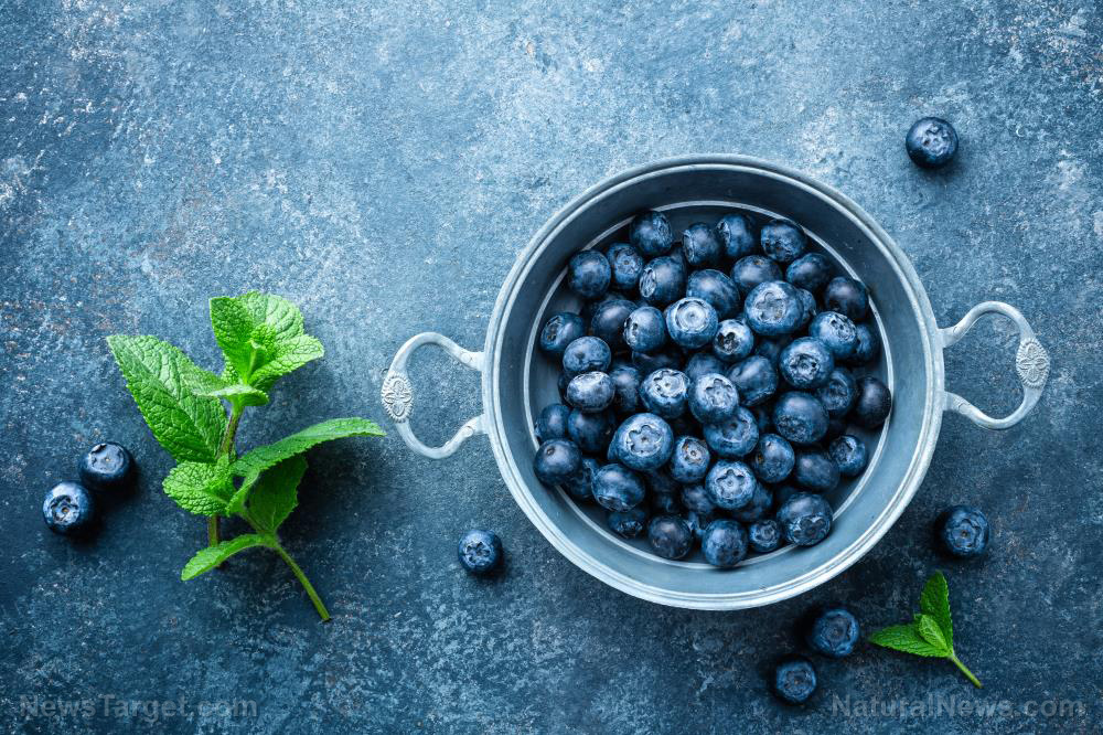 Image: Blueberries are more effective at killing cancer than radiotherapy
