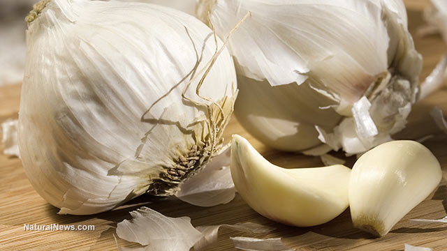 Image: New study reveals regular garlic intake may lower mortality risk