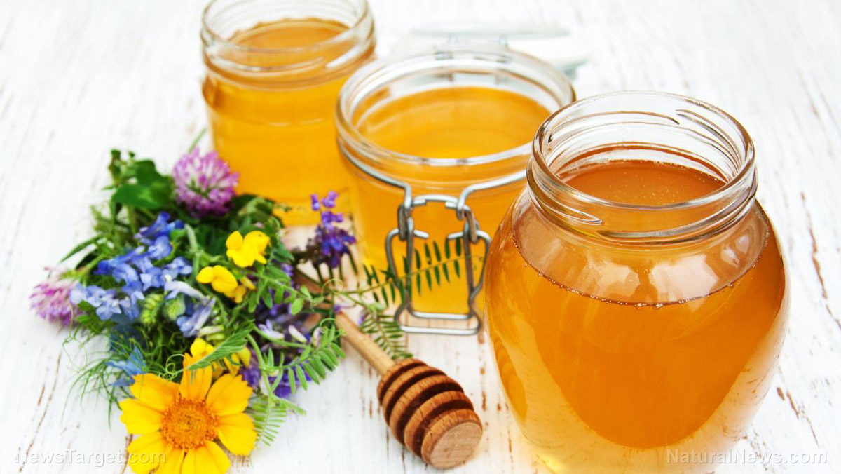 Image: The sweet and the sour: Health benefits of honey and apple cider vinegar